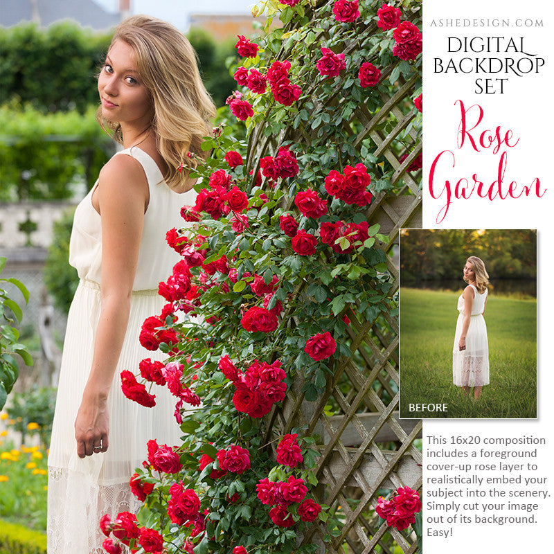 Ashe Design | Digital Backdrop Set | Rose Garden