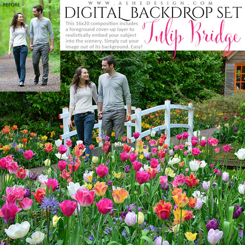 Ashe Design | Digital Backdrop Set | Tulip Bridge