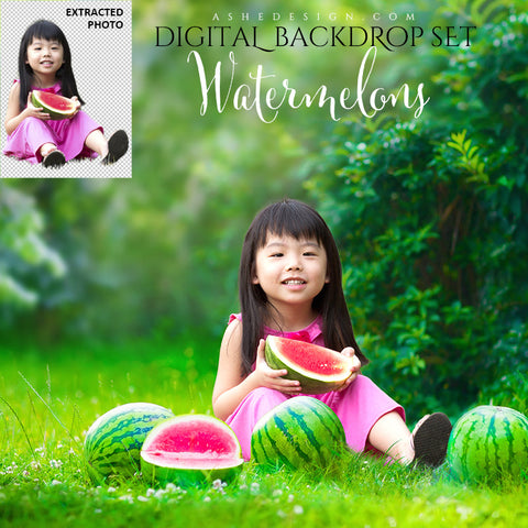 Ashe Design | Photoshop Template | Digital Backdrop Set | Watermelons