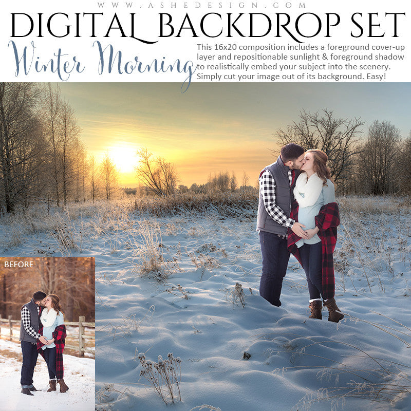 Ashe Design | Digital Backdrop Set | Winter Morning