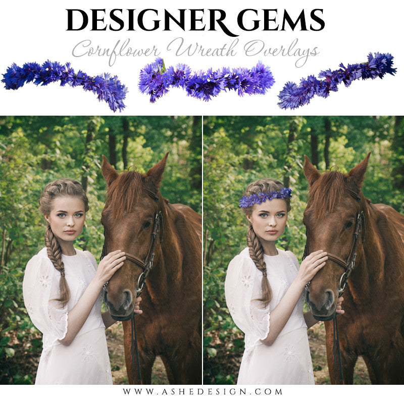 Ashe Design | Digital Overlays | Cornflower Head Wreaths