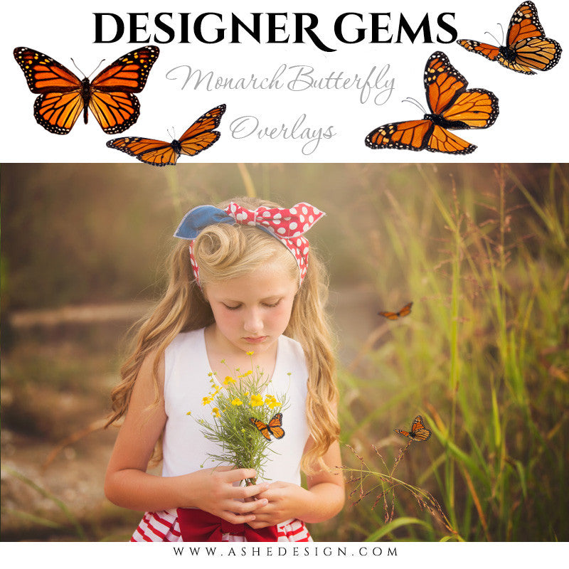 Ashe Design | Digital Overlays | Monarch Butterflies