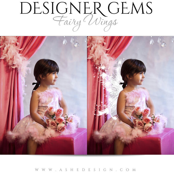 Designer Gems Photo Overlays | Fairy Wings example1