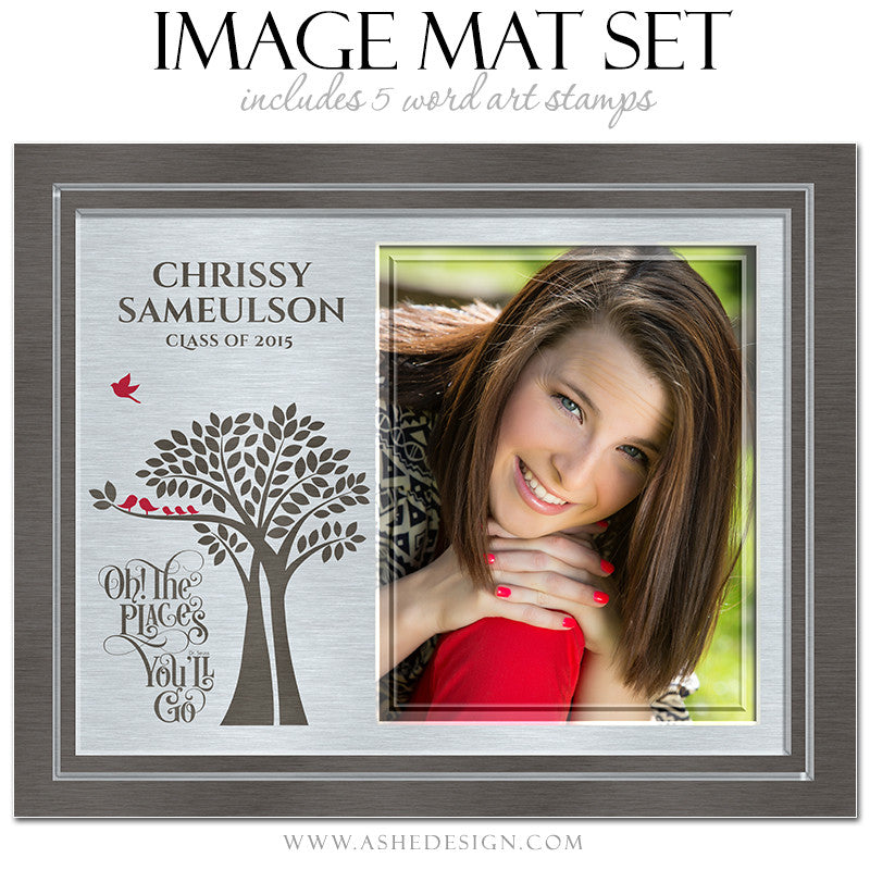Word Art Image Mat Set 8x10 & 16x20 | Tree Of Life Senior Brushed Metal1
