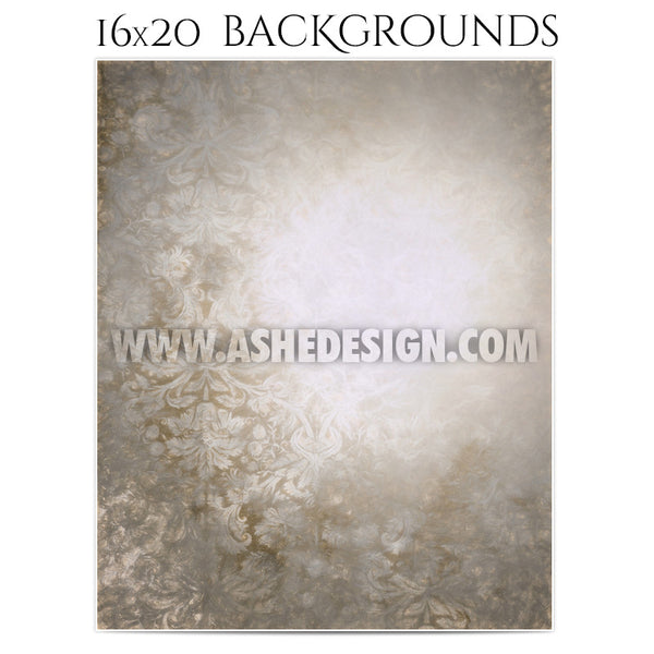 Backgrounds 16x20 | Damask Pastels 4
