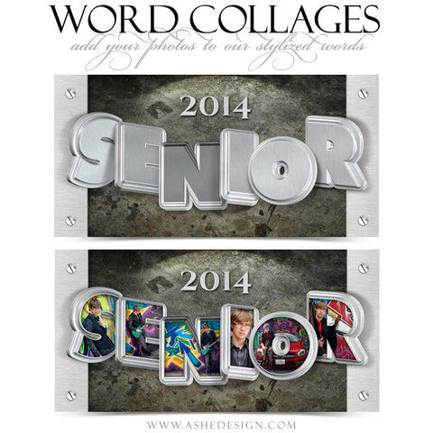 Senior Metal 3D Word Collage 10x20 web display