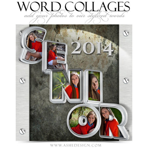 Senior Metal 3D Word Collage 12x12 web display