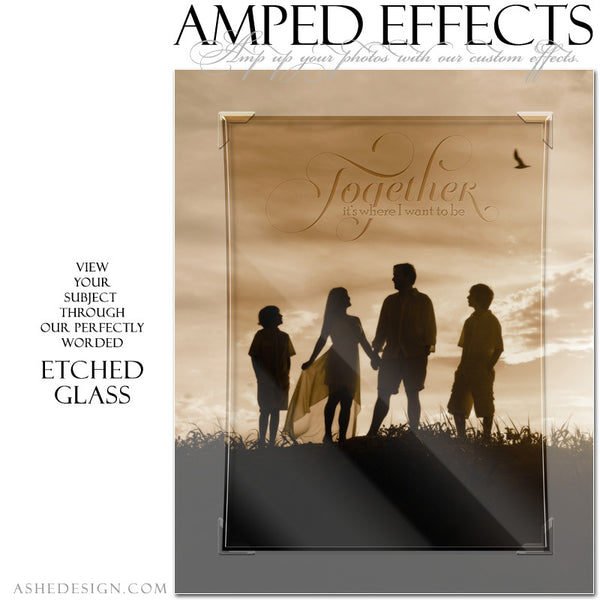 Ashe Design | Amped Effects Photography Templates | Etched Glass3