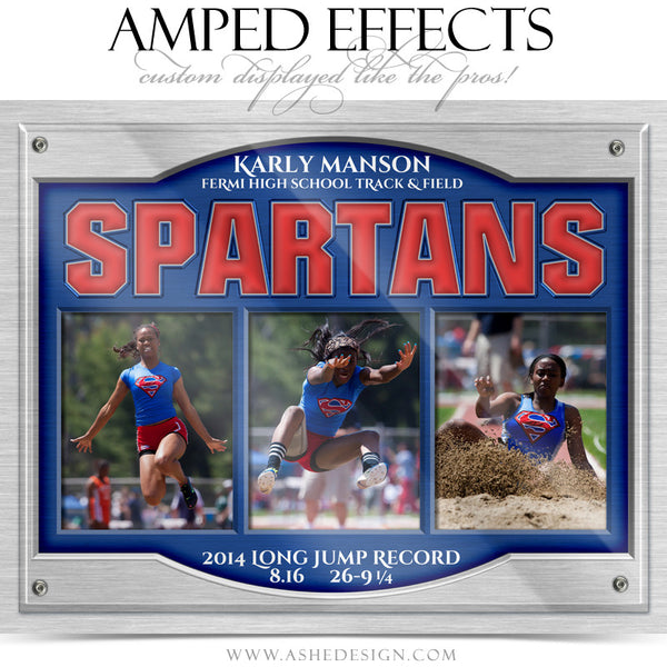 Ashe Design | Amped Effects | On Display Triptych web display2