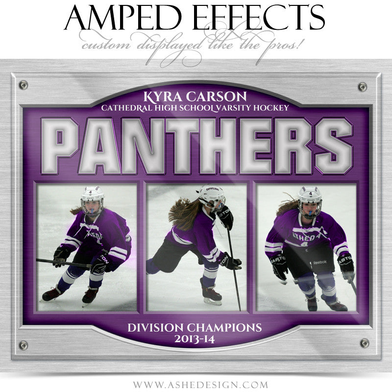 Ashe Design | Amped Effects | On Display Triptych web display4