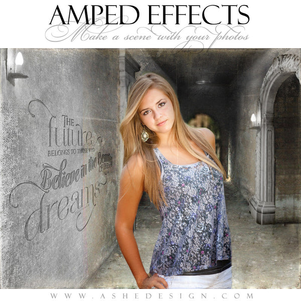 Ashe Design | Amped Effects Templates | Put It In Perspective example2 web display