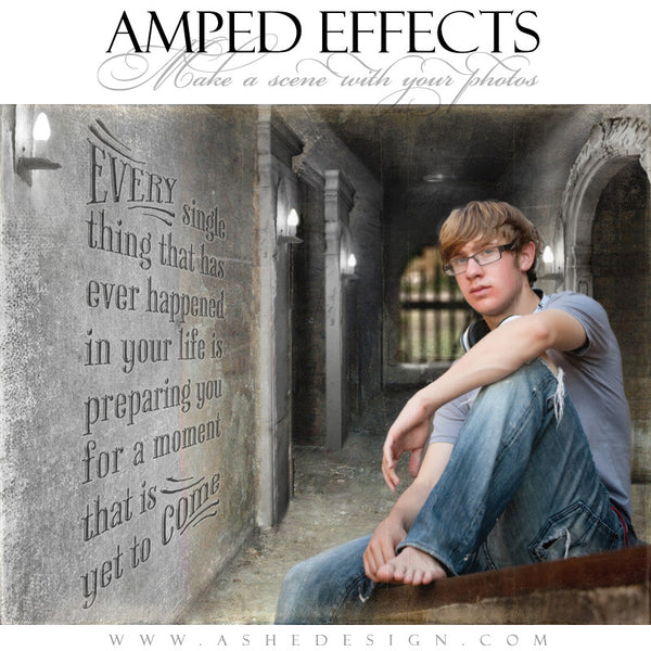 Ashe Design | Amped Effects Templates | Put It In Perspective example3 web display