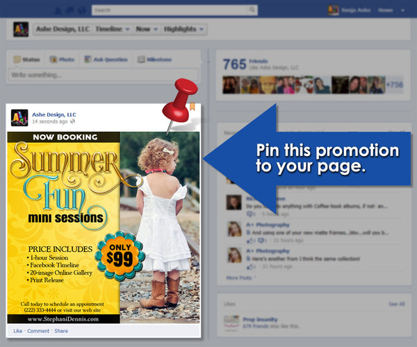Timeline Promotional Pin | Summer Fun example
