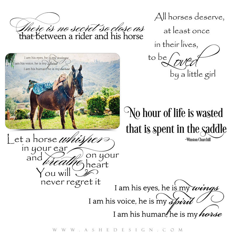 Word Art For Horses | Time In The Saddle