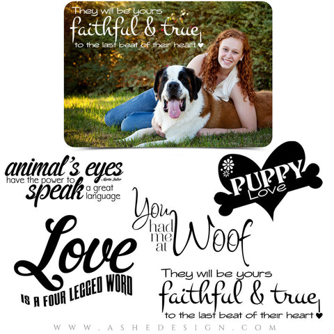 Pet Word Art Quotes - Puppy Love