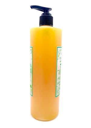 Cleanliness Is Next To Dogliness- Skeeter'ed Liquid Sham'pooch 16oz - The Apothecary Fairy