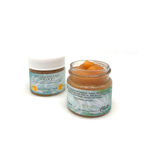 Sweet Orange Vanilla Hydrating Lip Salve 1/2oz - The Apothecary Fairy