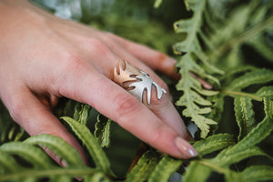 Tapered Fern Ring