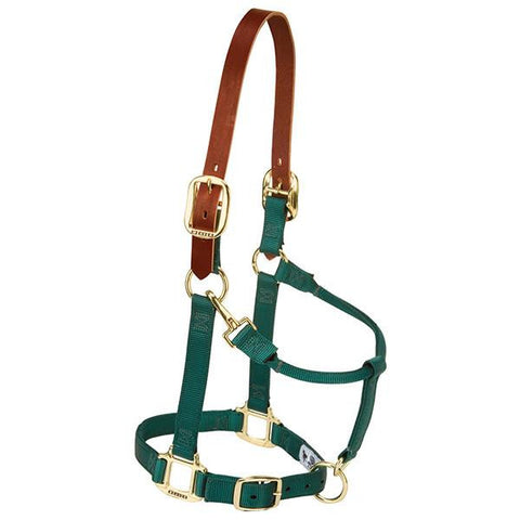 Breakaway Average Halter
