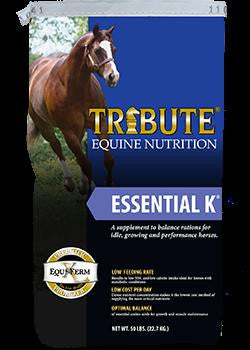 Tribute Essential K Blue