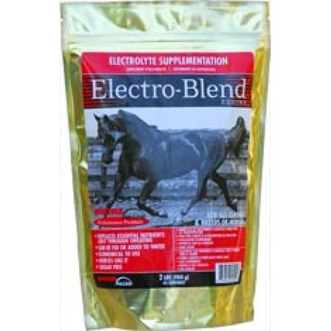 Electro-Blend 10lbs Very Berry