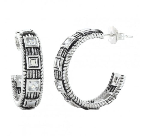 Studded Ice Hoop Earrings