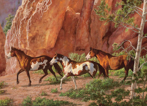 Puzzle Horse Canyon