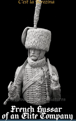 French Hussar of an Elite Company