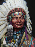 Sioux Chief Little Big Horn, 1876