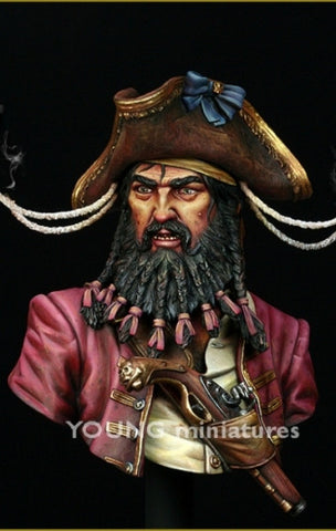 Black Beard 1718 - Queen Anne's Revenge