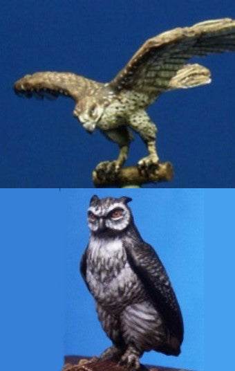 Eagle-Owl / Falcon