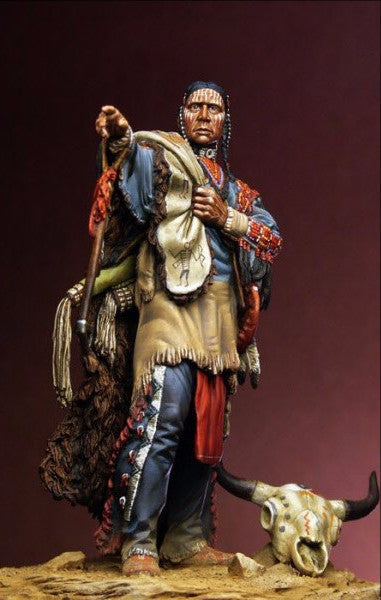 Noble Sioux Warrior