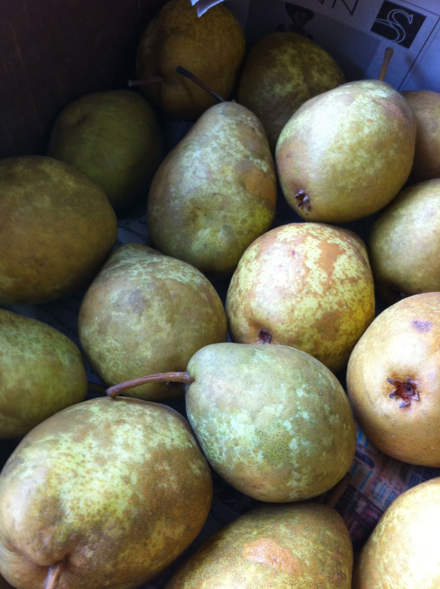 The Artisan at Work – Making Pear Preserves