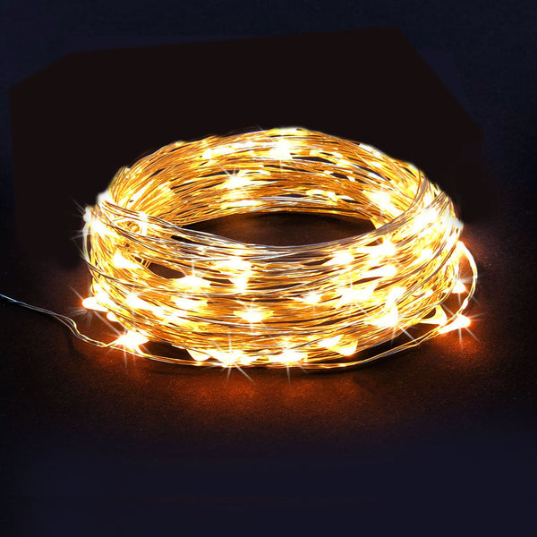 RTGS 30 Warm White Color LED String Lights Batteries Operated on 10 Feet Long Silver Color Wire, Indoor and Outdoor with Black Waterproof Batteries Box and Timer