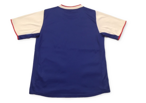 Ipswich Town 2013-14 Home Shirt Y