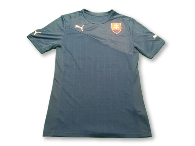 blue puma Slovakia 2012 Away football Shirt