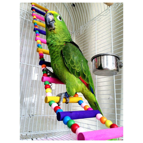 Wooden Ladder Bridge Toy For Parrots