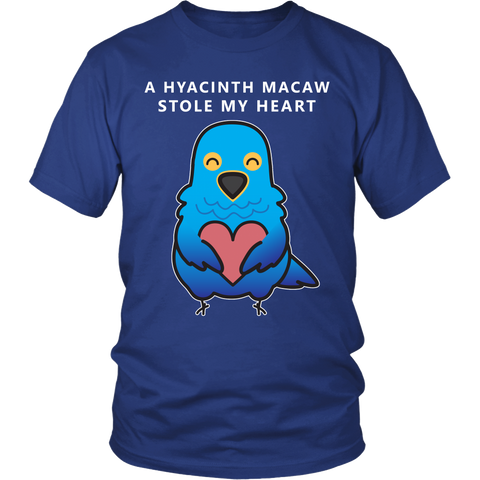 A HYACINTH MACAW STOLE MY HEART