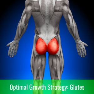 Optimal Growth Strategies: Glutes