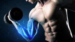 The Best Way to Build Muscle: How Much?