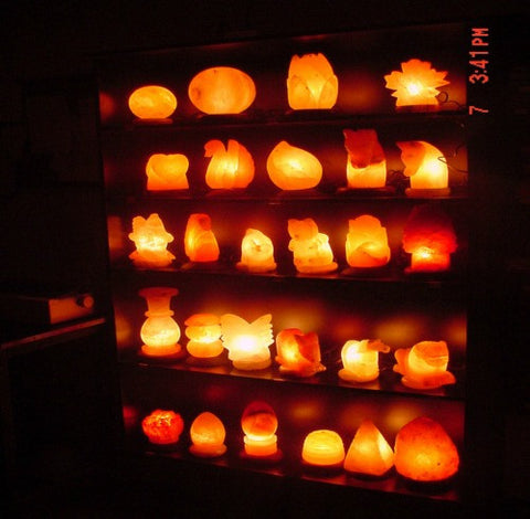 Animal Shaped Himalayan Salt Lamps
