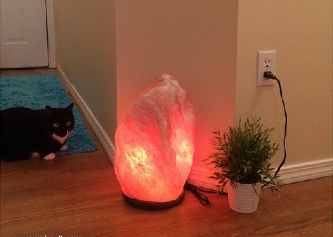 Electrical safety instructions for a salt lamp