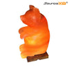 BEAR SHAPED HIMALAYAN CRYSTAL SALT LAMP - SourceDIY