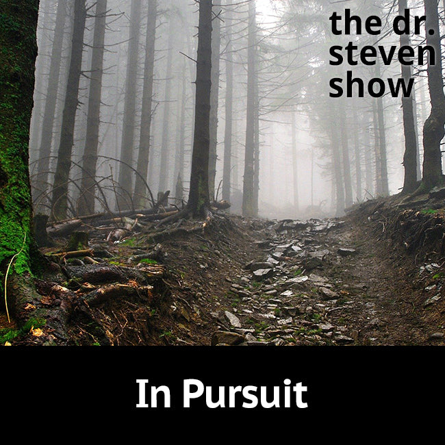 In Pursuit on The Dr. Steven Show with Steven Eisenberg