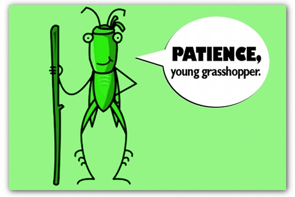 Patience, Young Grasshopper