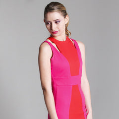Cleo Color-blocked Ponte Dress - Maison du Roi - 4