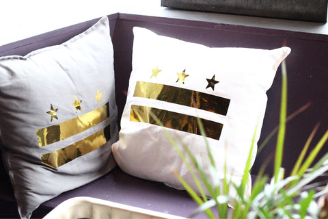 Washington DC pillow cover