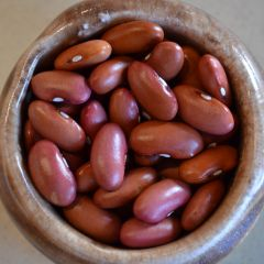 Junin Bush Bean Seeds