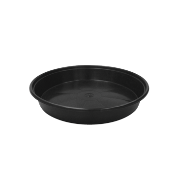 Mondi Super Saucer Black No Lip 10""