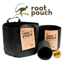 "Root Pouch Fabric Pot 7 Gal Black with Handles  14""dx11.75""h"